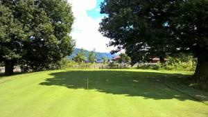 Noi reguli de golf începând cu 2019 1